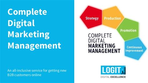 Executive Mba In Digital Marketing by Complete B2b Digital Marketing Management Service By Logit Hr