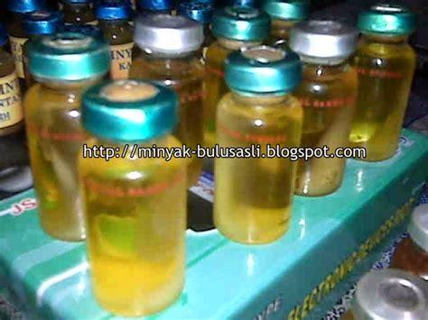 Minyak Bulus 20ml Asli Kalimantan minyak lintah kalimantan