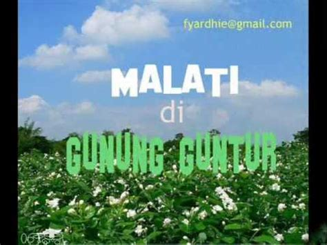 download lagu darso gupay katresna mp3 lagu jangkrik karya mang koko mp3 download stafaband