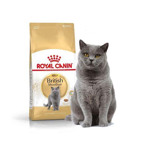 Royal Canin Shorthair Cat Food 85gr royal canin shorthair cat food
