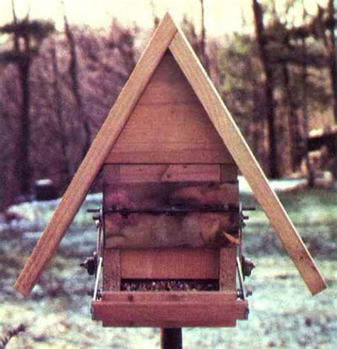 build a grackle proof bird feeder diy mother earth news