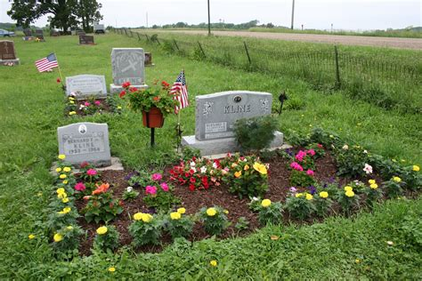 Best Backyard Trees For Privacy How To Archives Headstones Grave Markers Mouments Serving