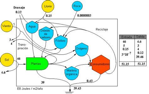 cadenas de papel viento y sol flujo de energia y materiales a trav 233 s de ecosistemas