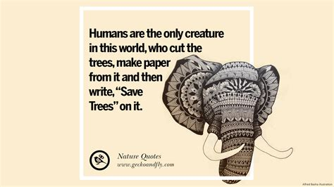 beautiful quotes  saving mother nature  earth