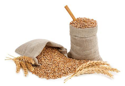 whole grains that are high in fiber whole grains high fiber