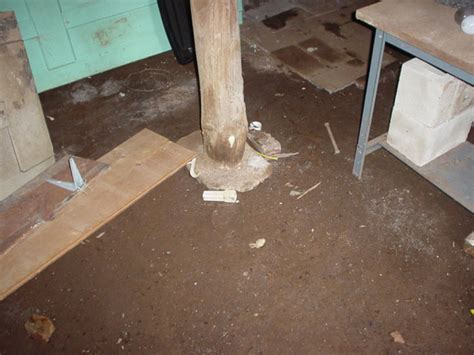 dirt floor basement solutions what s wrong with your basement identify your basement problem and how to solve it
