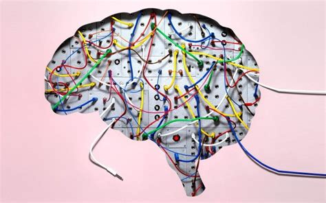 Brains Not Is Wired The Entertainment by Better Mind Better Rewire Your Brain For New