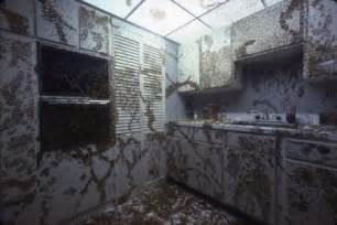 the cockroach kitchen
