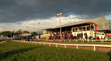 dragon boat racing kilkenny action continues at kilkenny greyhound track this evening