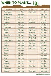 garden chart a typical english home when to plant vegetables guide