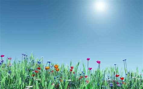 download themes for desktop background wilds spring flower themes best hd windows theme