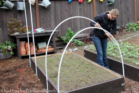 how to make a small covered greenhouse garden how to build a small poly tunnel one hundred dollars a month