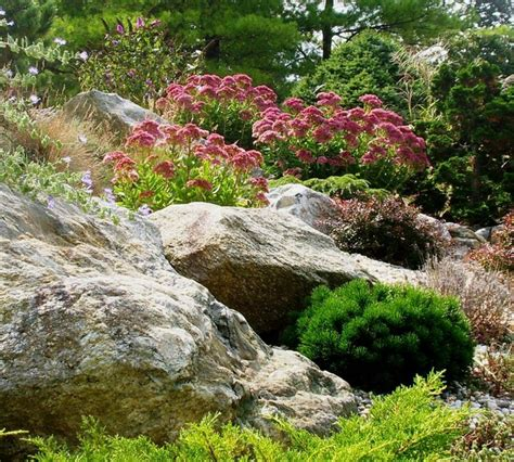 How To Rock Garden Rock Garden Contemporary Landscape New York By Ldaw Landscape Architecture Pc