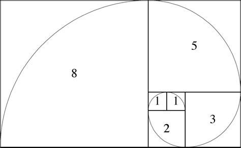 finally got how to create spiral number pattern program learn about the magic of fibonacci in nature the math of god