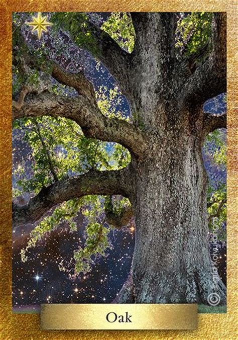 thor s oak fabulous realms pin by ingrid koivukangas l eco heart sanctuary on nature animals b