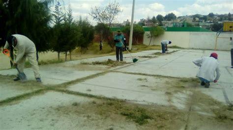 pulsored mx portal de noticias en tlaxcala realizan jornadas de limpieza en texoloc e consulta com