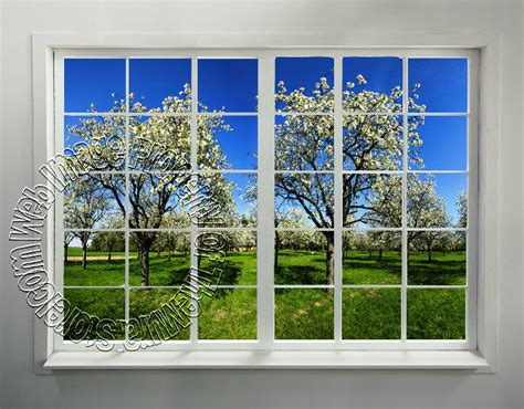 window wall murals orchard window peel stick wall mural themuralstore