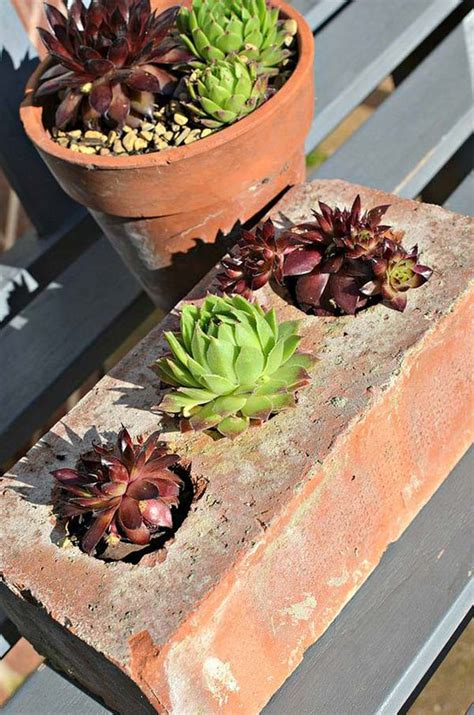 diy succulent projects diy ideas for creating cool garden or yard brick projects amazing diy interior home design