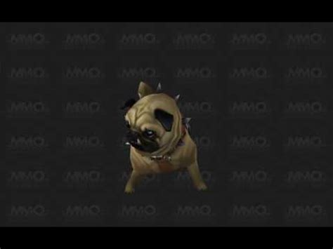 how to get the pug in wow pug pug