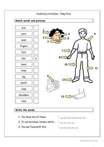 body part worksheet davezan