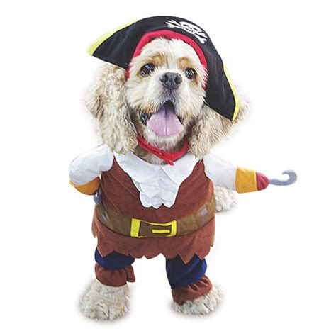 pirate costume for dogs best costume for 2017 mimi tara