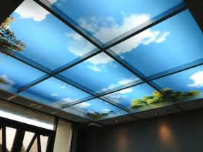 Drop Ceiling Choices Skypanel Light Fixture Cover Diffusers A Well And Blue