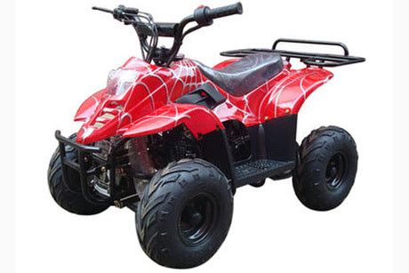 rch swing pair of tao tao tarantula 110cc atvs from rch