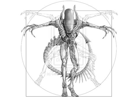 vitruvian man tattoo designs vitruvian design 171 hardergeneration
