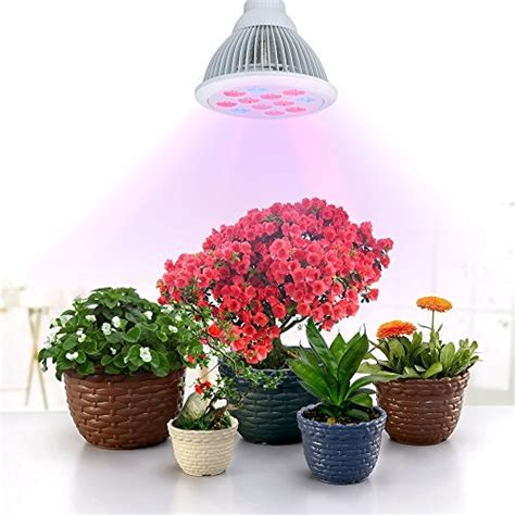 light bulbs for plants best grow light for indoor plants small medium large