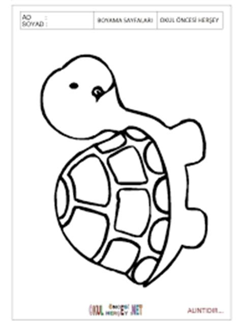 preschool coloring pages turtles turtle coloring pages for kids preschool and kindergarten
