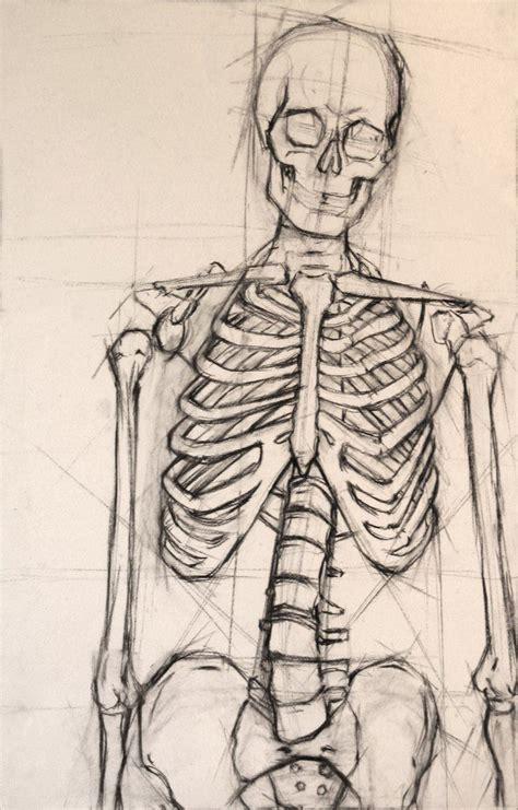 25 best ideas about skeletons on pinterest skeleton