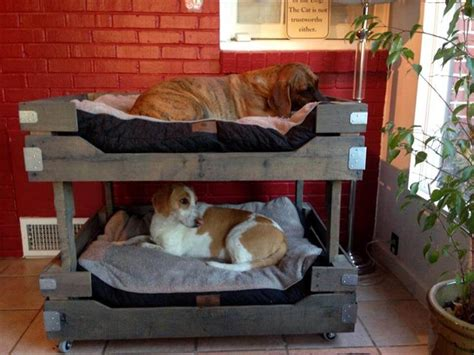 bunk beds for dogs 40 diy pallet dog bed ideas don t know which i love