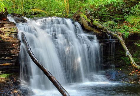 waterfall wallpapers backgrounds images freecreatives