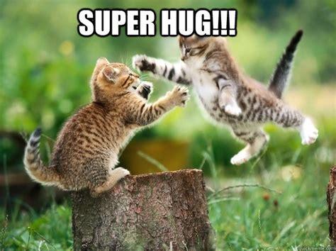 Hug Meme - 29 most funniest hug memes gifs images photos picsmine