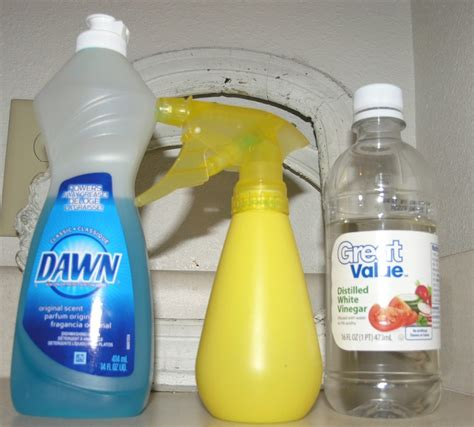 1000 ideas about best shower cleaner on clean