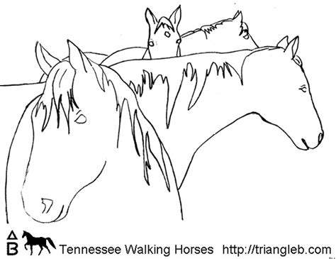 coloring pages of tennessee walking horses free tennessee walking horse coloring pages