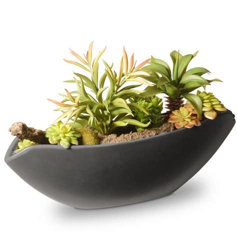 11 5 in x 7 in x 6 5 in succulents in