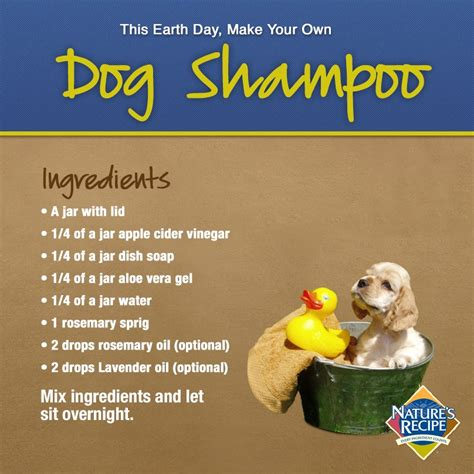 dish soap for dogs shoo