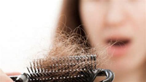 Qnc Jelly Gamat Untuk Rambut solusi uh mengatasi rambut rontok qnc jelly gamat
