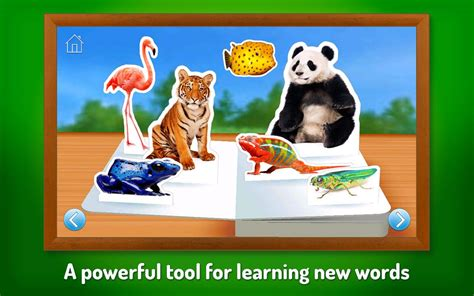 google images zoo animals zoo animals android apps on google play