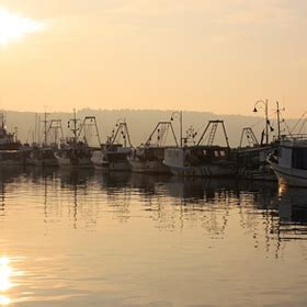 fishing boat hire westernport reel adventure fishing charters enjoy the pleasure of
