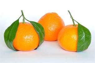 mandarine wikiwand