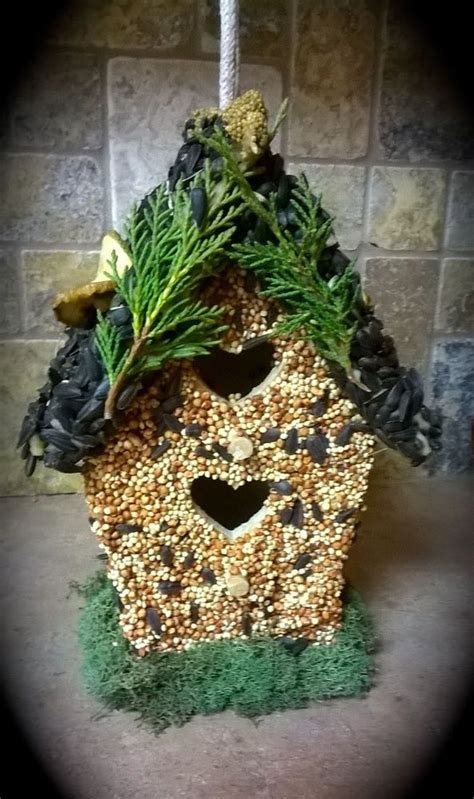 bird lovers all natural edible seed and fruit covered