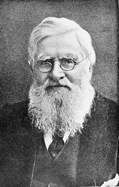Alfred Russel Wallace Biografi 1st name all on named wallace songs books gift ideas pics more