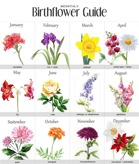 july birth flower tattoo 25 best ideas about birth flowers on month