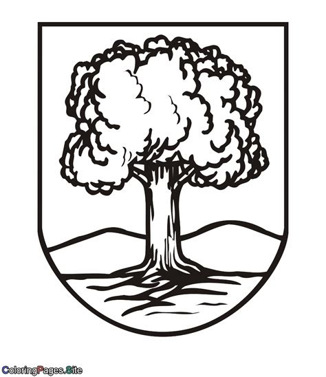 coloring page of oak tree oak tree coloring page