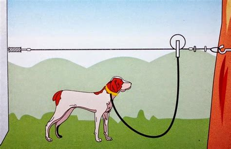 ran out of cable ties techsupportgore how to build a cable run for your dog dog runner cable