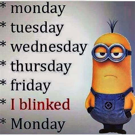 Monday Memes Funny - 25 best funny monday quotes on pinterest funny weekend