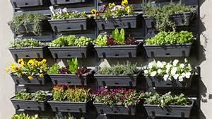 How to build a vertical garden bunnings warehouse