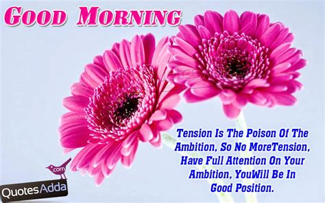 good morning wishes ecards quotes and messages with fresh morning quotes
